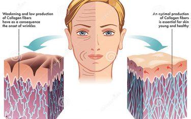 کلاژن چه فوایدی برای بدن دارد؟